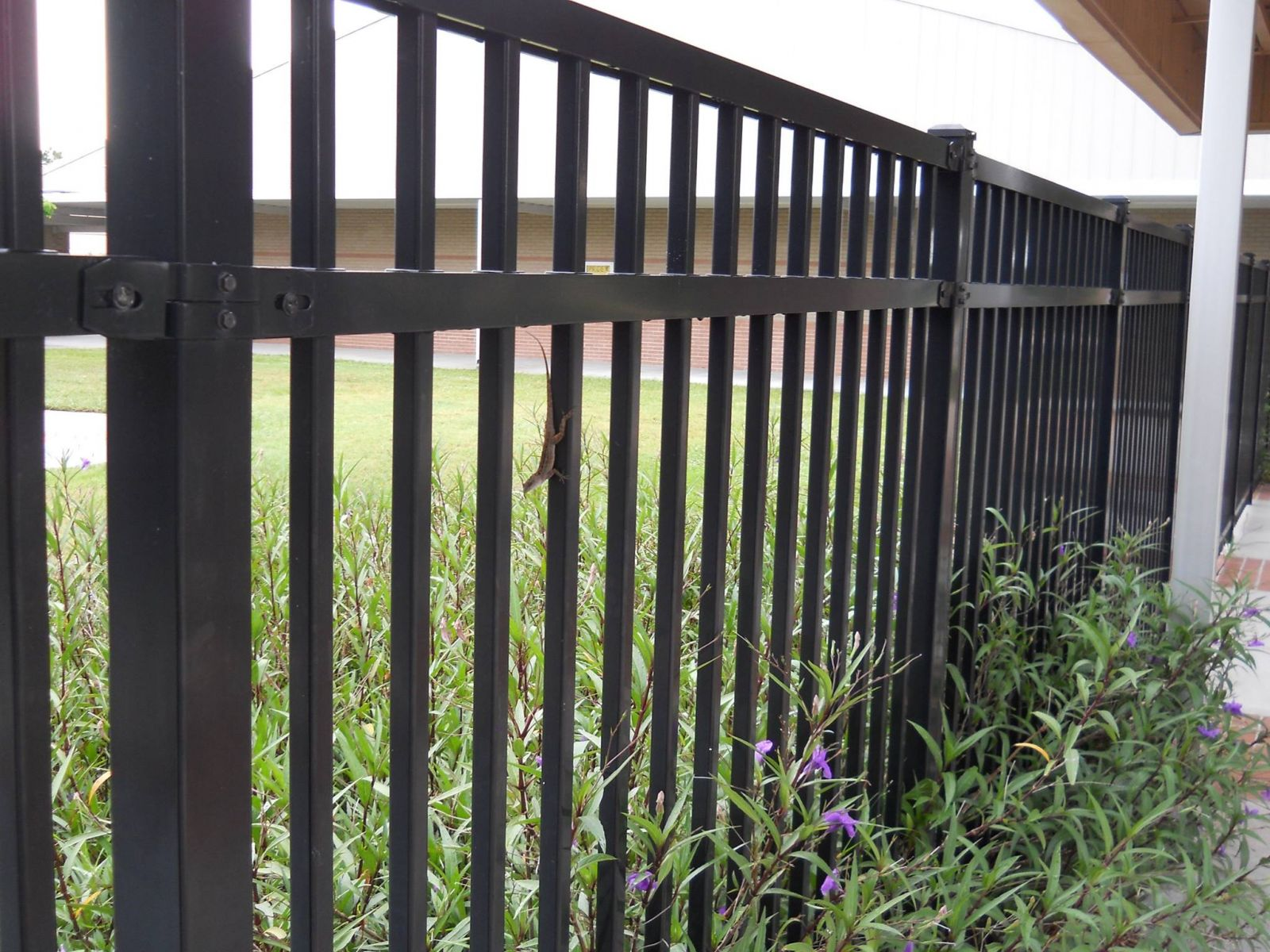 Flat Top Wrought Iron Fence