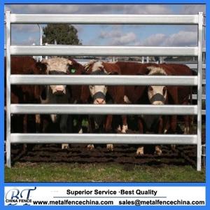 42x115 heavy duty Cattle panel