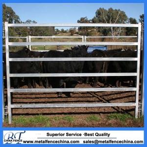 40x40mm SHS Cattle panel