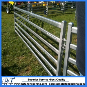 livestock sheep yard panels
